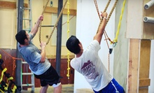 $8 for Entry into Obstacle Course at Iron Sports