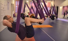 $10 for a One-Hour Drop-In Aerial Yoga Fitness Class at 9:30 a.m. at Fly Gym Aerial Fitness