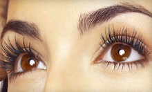 $150 for a Full-Set of Professional Silk-Blend Eyelash Extensions at Winx Beautique