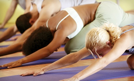 $8 for a Gentle Yoga Class at 11:15 a.m. at The Yoga Studio
