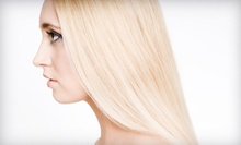 $60 for a Haircut, Deep Conditioning Treatment, and  Style at Michael Helene Salon