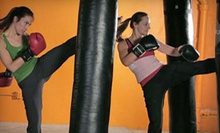 $10 for a One-Hour Kickboxing Class at 6 p.m.  at Hoger Mixed Martial Arts