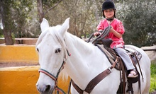 $35 for a Games on Horseback Class at 5:30 p.m. at The Joni Fitts School of Horsemanship