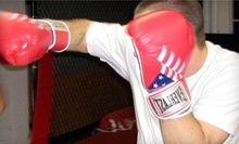 $9 for a Group Martial Arts and Fitness Class at 6:15 p.m. at Swiftkick Martial Arts