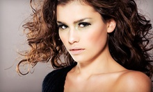 $60 for a Tint, Haircut, and Style at Studio One A Salon