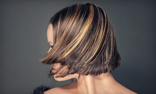 $74 for All Over Color &amp; Haircut at Eco Friendly Beauty Bar