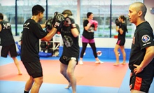 $15 for a One-Hour Women's Jiu-Jitsu Class at 3 p.m. at Guerrilla Jiu-Jitsu Martial Arts and Fitness