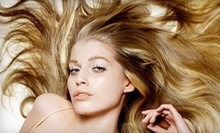 $70 for a Conditioning Treatment with Haircut and Styling at hair studio in Montrose
