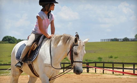 $27 for a Single Riding Lesson at La Finca Stables