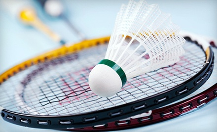 $2 for a Badminton Session  at Ace Badminton Centre