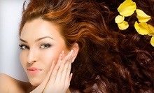 $150 for Women's Haircut, Full Highlights, Deep Conditioner &amp; Blowout at The Landmark Salon