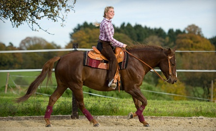 $35 for a First Time Horse Lovers Experience at Blackthorn Farms