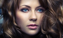 $75 for a Partial Highlight and Blowdry at Helaine Marie Salon
