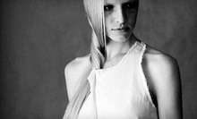 $50 for a Haircut &amp; Style  at Selmas International Hair Design
