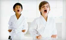 $10 for Karate Kids Beginning Karate Class & Private Lesson at 4:45 at Babin's Karate for Kids