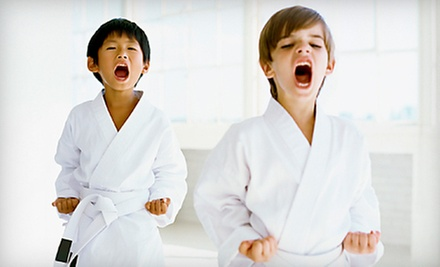 $10 for Karate Kids Beginner Karate Class & Private Lesson at 4 p.m. at Babin's Karate for Kids