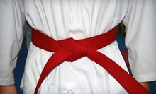 $12 for a Jiu-Jitsu Class at 7 p.m.  at Alameda Brazilian Jiu-jitsu