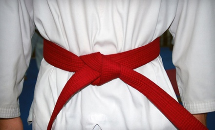 $10 for BJJ and MMA Training at Alameda Brazilian Jiu-jitsu