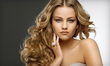 $60 for Full Highlight Treatment at Alize' The Premier Salon