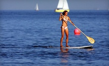 $18 for Two-Hour Paddleboard Rental at 4 p.m. at Sunrise Paddleboards