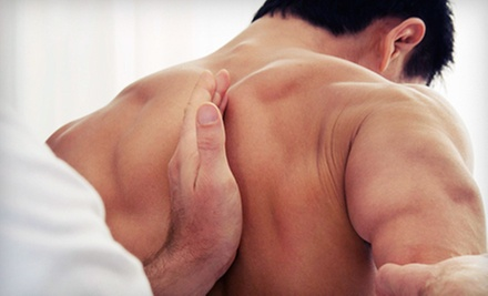 $20 for a Chiropractic Treatment at Stekel Chiropractic