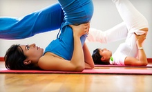 $8 for 5:45pm Drop-in Introductory to Yoga Class at The Yoga Suite Center for Yoga Studies