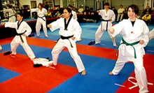 $5 for a 50-Minute Children's (ages 3-6) Class at 4 p.m. at Park's Taekwondo-Redmond