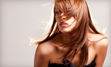 $150 for a Highlight, Haircut and Style at Giti Salon