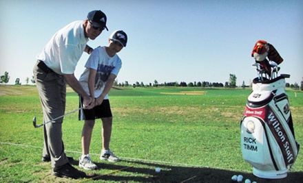 $70 for a Private Golf Lesson at Timm Golf Academy