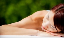 $20 for Magnetic Massage at DAN Wellness Clinic