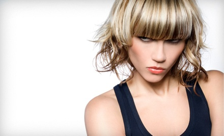 $35 for a Blow-Dry and Haircut at E Geovanni Salon