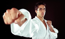 $5 for a One-Hour Beginner MMA Class at 7 p.m. at The Institute of Martial Arts