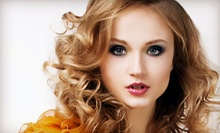 $70 for a Color or  Partial Highlights and Haircut at Hair by Ellen