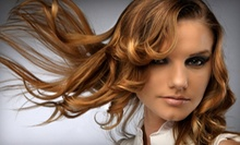 $24 for a Ladies' Haircut and Blow Dry at Artistic Image Salon & Spa