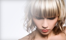 $75 for Haircut and Highlights at Envy Hair Studio with Danielle