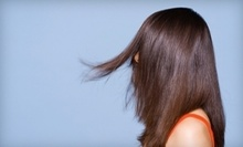 $35 for a Haircut at Ringolevio Salon and Spa