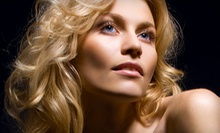 $20 for a Shampoo, Cut and Style with Kelly at Santa Fe Hair Co