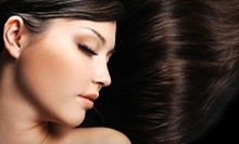 $27 for Pressure Point Shampoo with Certified Organic Conditioner at Divine Creations Hair Designs