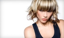 $50 for Hair Cut & Blow Dry at Hair by Rob Freeland