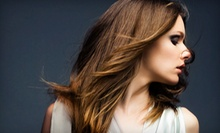 $65 for a Mini Partial, Haircut, and Blow Dry (Up To $110 Value) at Sublime Salon and Spa