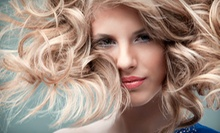 $45 for a Haircut and Deep Conditioning Treatment at Shear Irish