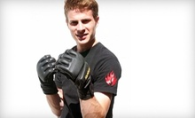 $15 for $20 at AB Mixed Martial Arts Academy