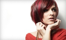 $45 for $70 Worth of Women's Hair Services at Platinum Salon International
