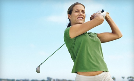 $39 for One 60-Minute Golf Lesson at Paragon Golf Center - Peter Yum