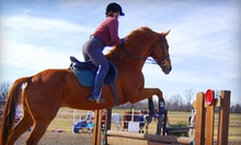 $19 for a 60-Minute Horse Riding Lesson at Whispering Winds Training Center