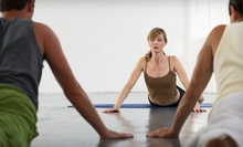 $9 for a Slow Burn Vinyasa Yoga Class at 6:30 p.m. at Del Sol Martial Arts & Fitness