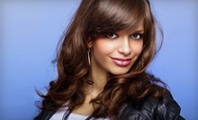 $30 for Womans Haircut at Clove Salon