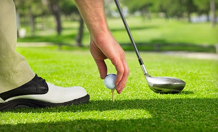 $25 for a 30-Minute Golf Lesson at Golf Academy Sean P. Kicker, PGA Professional