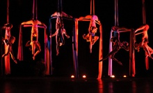 $28 for a 1 p.m. Two-Hour Intro to Aerial Fabric and Low Trapeze at A-WOL: Dance Collective