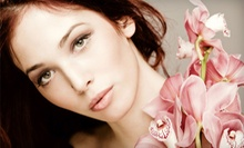 $17 for Brow Design at me2 beauty skincare & wellness